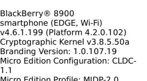 LEAK: OS 4.6.1.199 leaked for BlackBerry Curve 8900